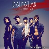 Dalmatian - E.R.