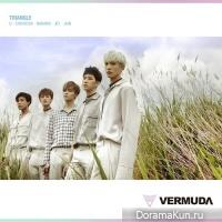 VERMUDA – Triangle