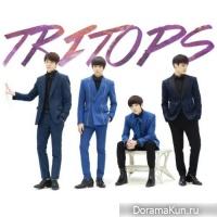 TRITOPS - Missing You Missing You Missing You