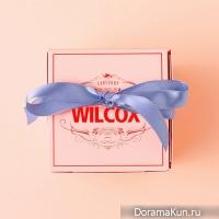 Wilcox – Cake Shop