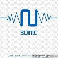 nsonic_lie