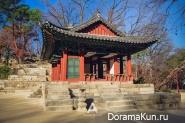 changdeok-palace
