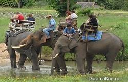 Самые известные приметы Таиланда
