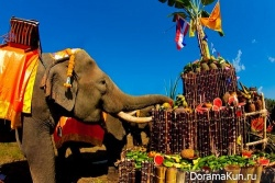 Национальный день слона (Таиланд)