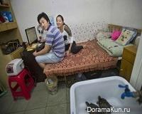 Капсульный дом, или общежитие по-китайски