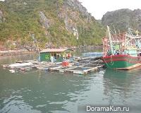 Плавающие деревни острова Кат Ба во Вьетнаме