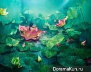 Волшебная студия фотографа Джи Янг