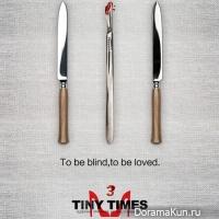 Tiny Times 3.0