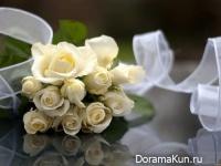 День роз