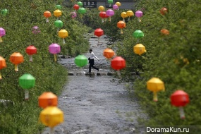 birthday of Buddha in Japan