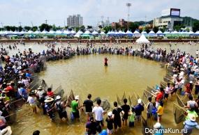 Festivals South Korea