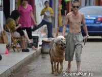 Kunming shepherd