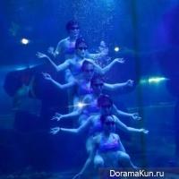 Aquarium ballet