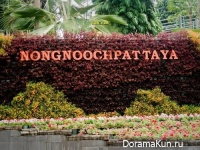 Thailand . Nong Nooch
