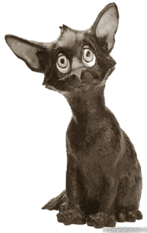 Myth cat