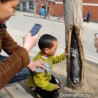 Art Street Hebei