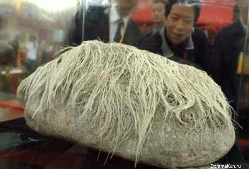 hairy stone