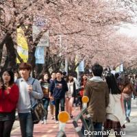 фестивальная весна