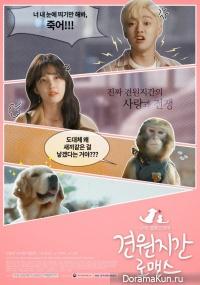 Monkey and Dog Romance