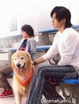 Для тебя во всем цвету / Hana sakari no kimi tachi he
