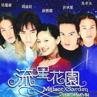 Meteor Garden 1