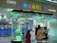 Аквариум COEX