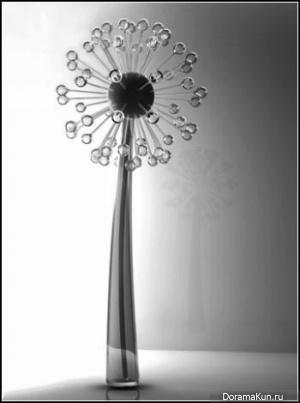Светильник-одуванчик Secret of Light