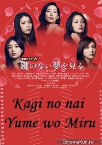 Kagi no nai Yume wo Miru