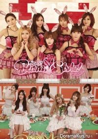 T-ara Bunny Style!