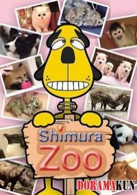 Shimura ZOO