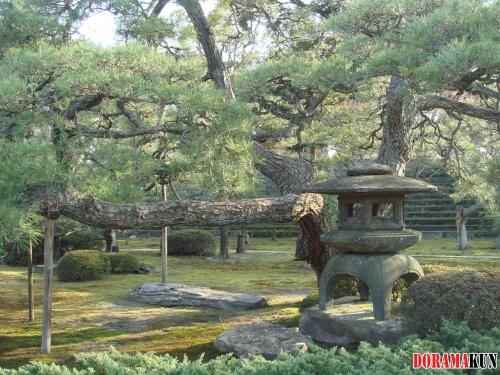 Япония. Сады замка Нидзё.