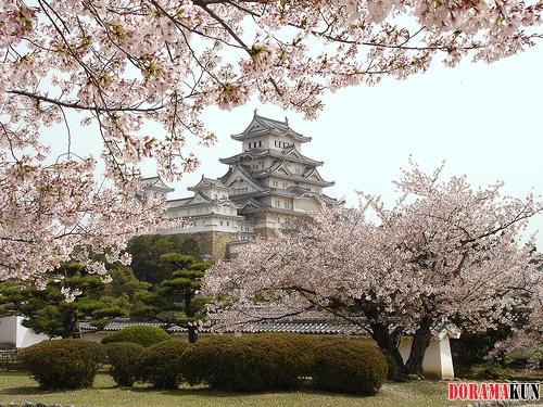 Административное деление Японии