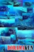 Япония. Подводные пирамиды острова Йонагуни
