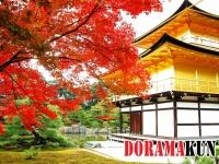 Япония. Кинкакудзи (Золотой павильон).