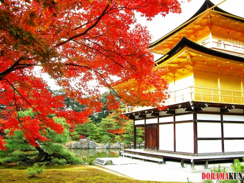 Япония. Кинкакудзи (Золотой павильон)
