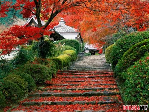 Япония. Киото