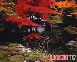 Япония. Нанзэндзи.