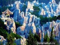 Китай. Шилинь, каменный лес