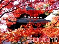 Япония. Тофукудзи.