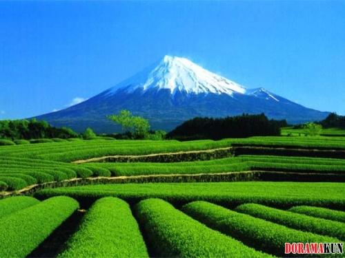 Япония. Времена года.