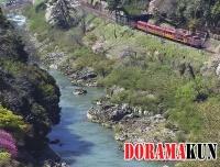 Япония. Романтический поезд Сагано.