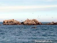 Подводная Гробница короля Мунму