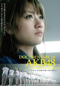 Документальный фильм о AKB48: Нет цветка без дождя