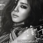 Son Dam Bi – Tears Trickling