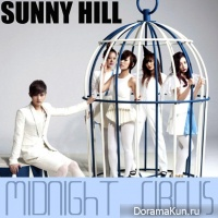 Sunny Hill - Midnight Circus