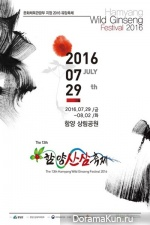 Festival of wild ginseng