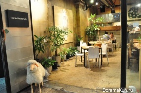 Seoul cafe with sheep