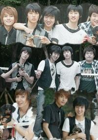Super Junior: Animal Farm